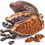 nota-olfattiva-Baccello di Cacao