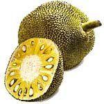 nota-olfattiva-Jackfruit