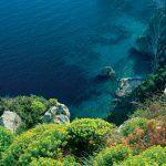 Blu Mediterraneo – Ginepro di Sardegna - Acqua di Parma - Foto 4