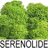 nota-olfattiva-Serenolide
