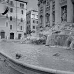 Essenza di Roma Uomo - Laura Biagiotti - Foto 4