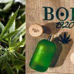 Cannabis fruttata - Bois 1920 - Foto 3