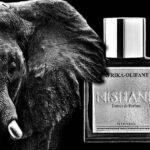Afrika Olifant - Nishane - Foto 3
